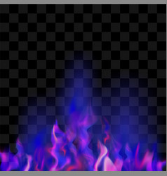 blue burning fire flame vector image
