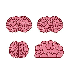 brain silhouettes several views in pink color vector image