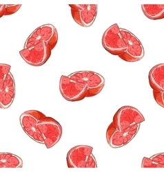 Colorful Grapefruit pattern vector image vector image
