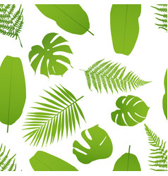 Tropicla seamless pattern with palm and fern vector