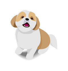 Adorable sitting brown and white dog with shadow vector