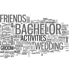 Bachelor party ideas text word cloud concept vector
