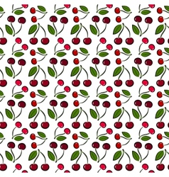 cherry pattern vector image vector image