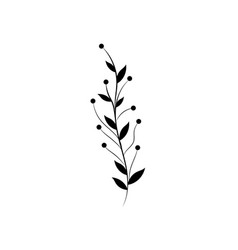 rustic branch with leaves and flowers vector image vector image