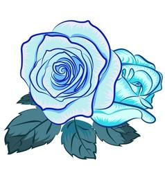 Blu rose vector