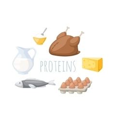 Proteins food vector