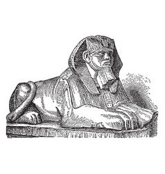 Sphinx is a zoomorphic mythological figure vector
