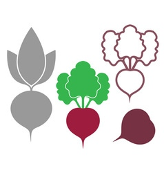 Beet outline silhouette icon vector