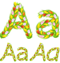 Font type letter a made from flower tulip vector