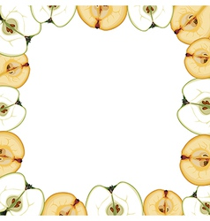 fruit border vector image vector image