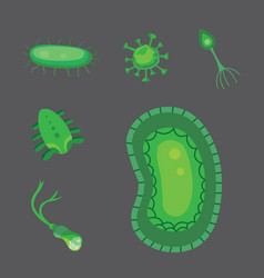 set bacteria and virus flat vector image
