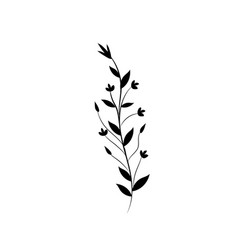 Rustic branch with leaves and flowers vector