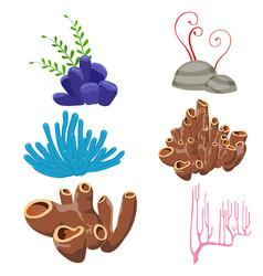 Underwater flora and fauna underwater flora and vector