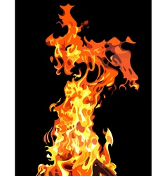 Fire flames painted vector