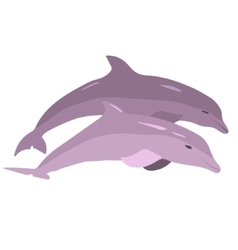 Image of dolphins jumping out of the water vector
