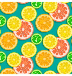 Seamless citrus fruits background vector