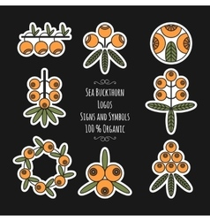 Set of sea buckthorn logos stickers on black vector