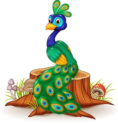 Cartoon peacock on tree stump vector
