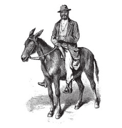 Man on mule vintage vector