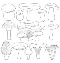 set of black and white images with mushrooms vector image vector image