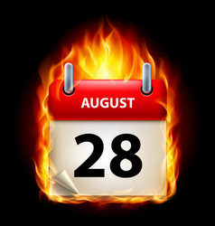 twenty-eighth august in calendar burning icon on vector image