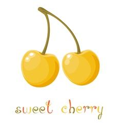 Yellow Sweet Cherry vector image