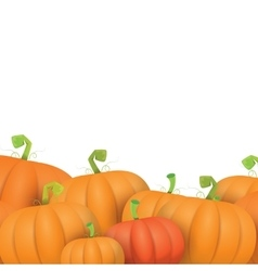 Autumn pumpkins border design template vector