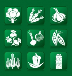 Vegetable buttons vector
