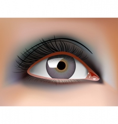 Eye closeup vector
