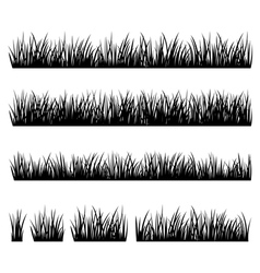 Set of silhouette of grass isolated on white backg vector