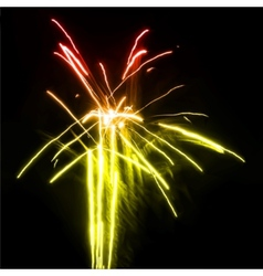 Fireworks in the night sky vector image vector image