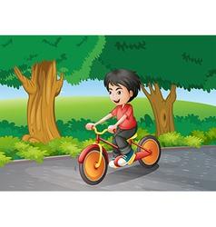 A boy biking near the big trees vector image