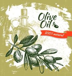 Hand drawn olive vintage background vector