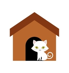 cat animal domestic furry brown house vector image