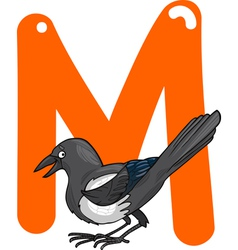 M for magpie vector image vector image