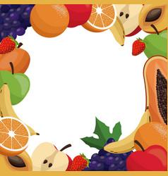 fruit delicious frame design vector image