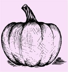 pumpkin doodle style vector image vector image