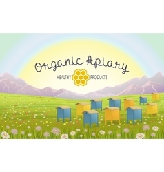 Apiary in alpine meadows mountains honey farm vector