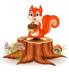 Cartoon squirrel holding pinecone on tree stump vector
