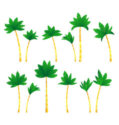 Set tropical palm trees vector