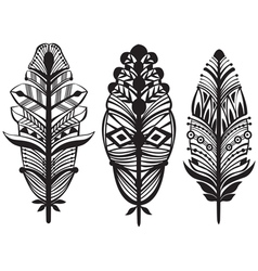 Set of ethnic tribal feathers vector image vector image