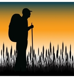 Tourist in field vector image vector image