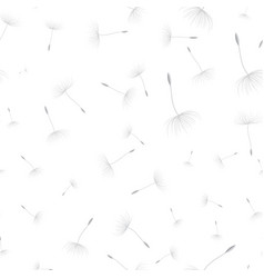 dandelion seeds seamless background vector image