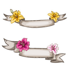 Two decorative kraft ribbons and lily flowers vector