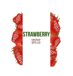 Strawberry border and place for your text vector