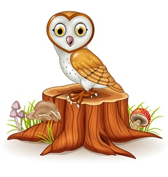 Cute barn owl sitting on tree stump vector