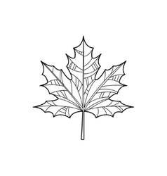 Maple Leaf Zentangle For Coloring vector image vector image