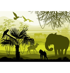 nature with wild animals elephant monkey antelope vector image vector image
