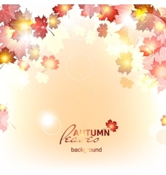 Abstract background of autumn leaf fall vector