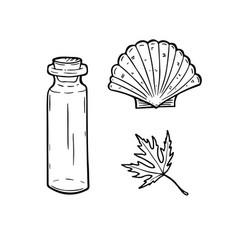 Line art set with bottle seashell and leaf vector